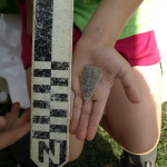 A camp participant displays a projectile point found during excavation